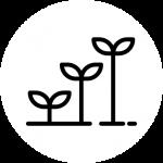 niveau-icon
